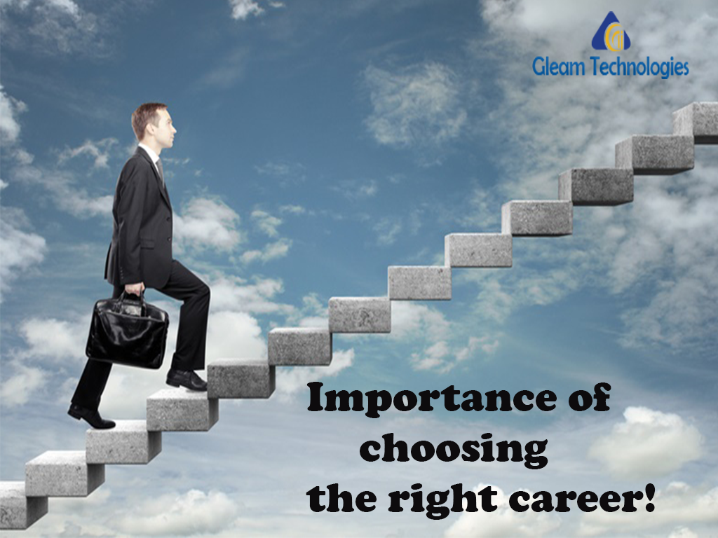 importance of choosing career