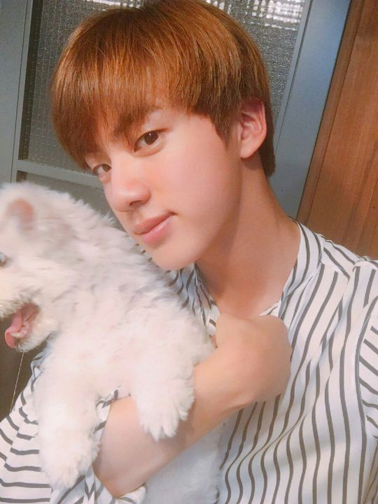 liked by seokjinnie and 1,000 others