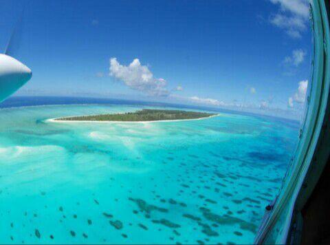 Le meilleur Comores koi :