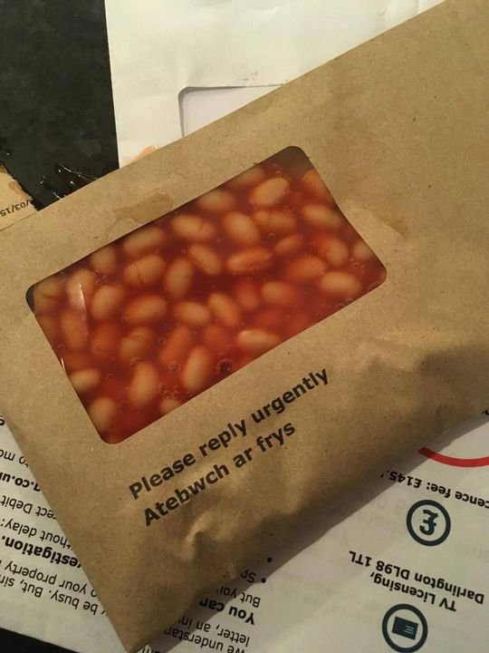 Memes Pictures Of Baked Beans Where They Should Not Be Wattpad