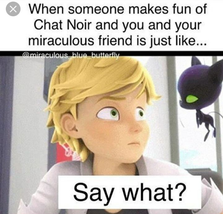 The Miraculous Tales Of Ladybug And Chat Noir Memes Wattpad