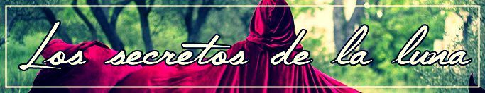 — ¡Pero Rosa! ¿Cómo que un hombre lobo? — gritó Camerón quien a pesar de no ser la mayor parecía ser la más madura de las cinco