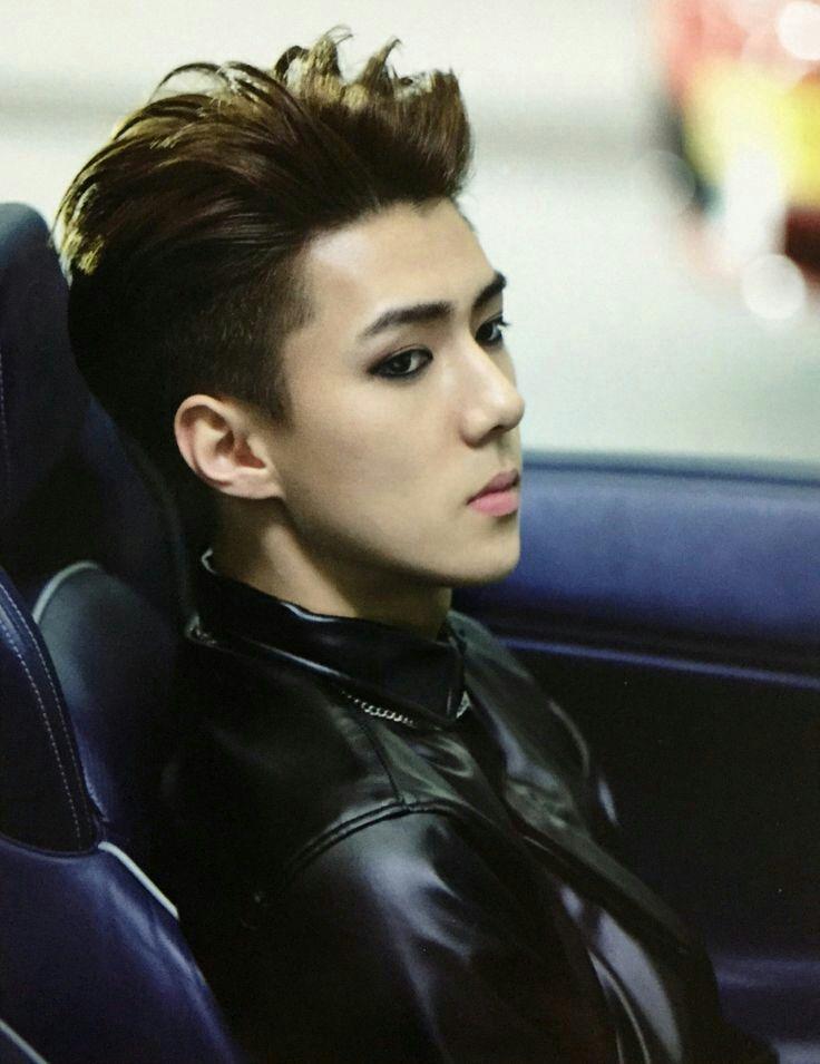 Od dzisiejszej wizyty w dormie EXO nie mogłam przestać myśleć o niczym.