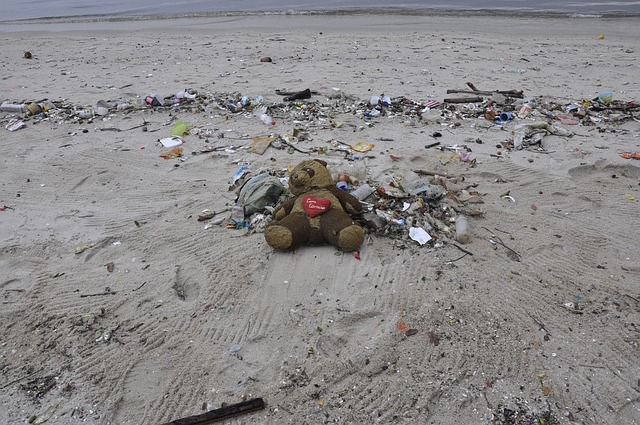 Using the trash grabber Ava supplied her with, Emmie poked at an empty paper coffee cup left discarded on the beach