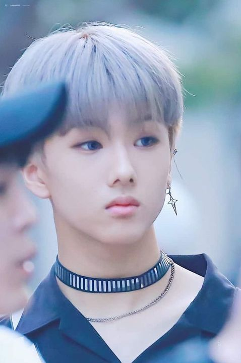 Stray kids 10th member - Character info - Wattpad