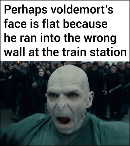 Harry Potter Memes Why Voldemort S Nose Is Flat Wattpad