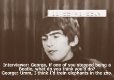 I'd definitely go to the zoo and watch the elephant trainer 😂😂😂