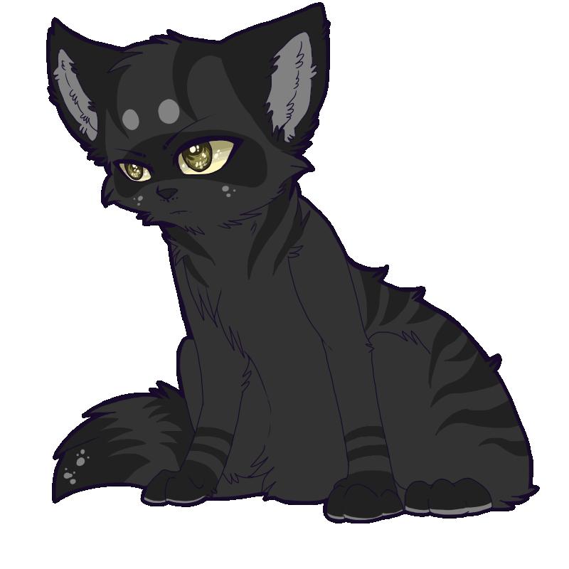 Warrior Cats Darkstripe X Reader