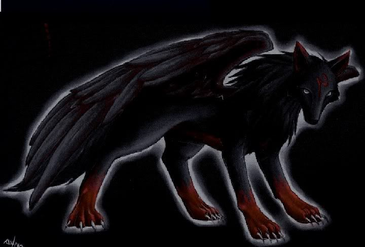 .*+The Legend Of The Black Wolf+*. {COMPLETED ... - photo#13