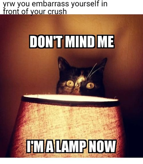 Emo Memes I Embarrassed Myself Wattpad