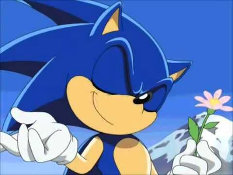 Sonic: -Con un gesto alegre y confiado- No importa yo me estoy divirtiendo mucho contigo