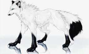 """V""""Cloud Its okay you can do this"""" A Black and purple Male wolf said to his mate """"Shut the Hell up Midnight"""" Cloud said """"Cloud I know it hurts but u mustn't lose concisus"""" He said """"I won't Gesh"""" Cloud said The way cloud is white with Light grey st..."""