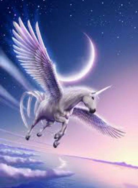 unicorns are real alicorns are better wattpad