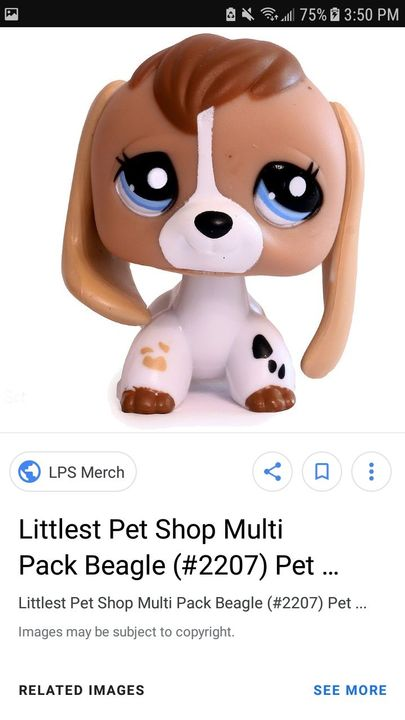 All The Lps I Want Part 2 Beagles Wattpad
