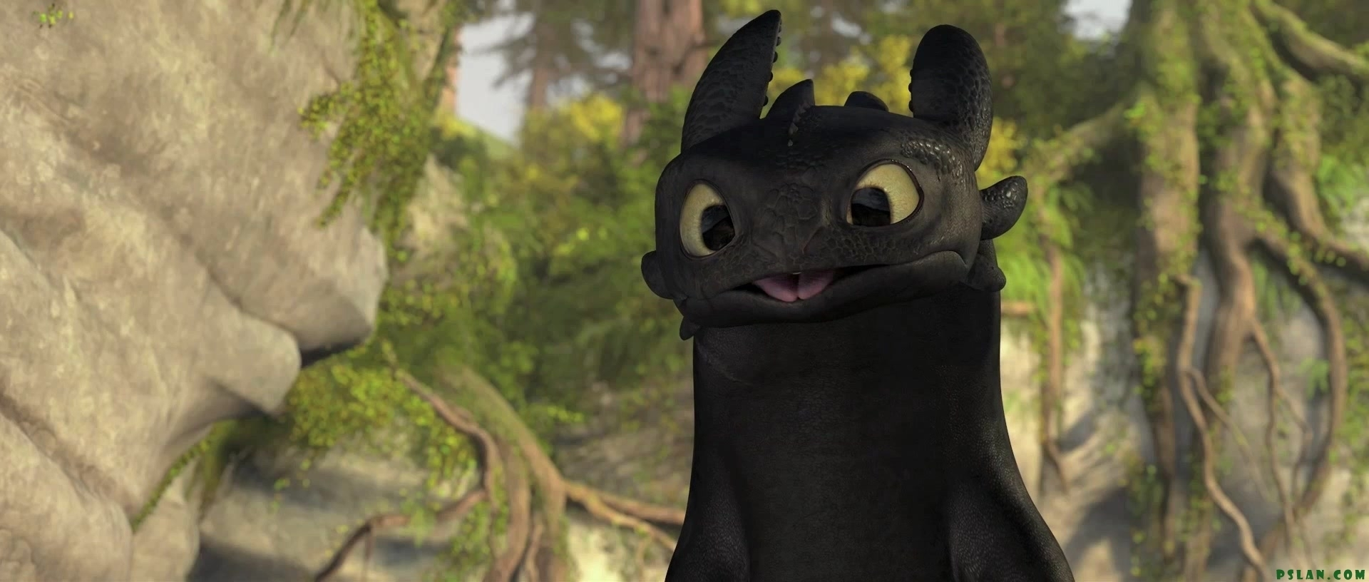 Reader x Toothless (how to train your dragon) Toothless x