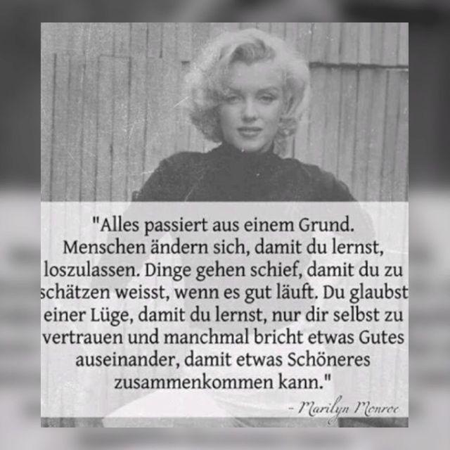 Die Besten Zitate Sprüche Texte Marilyn Monroe Wattpad