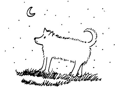 São tantas as histórias que Alto Paraíso viveuque para ser justa comigo,não poderia esquecera história de Lobinho,o mais meigo cãozinhoque a cidade conheceu