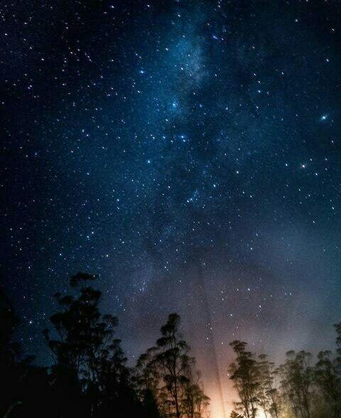 Malam itu, langit ditaburi gemintang nan memukau