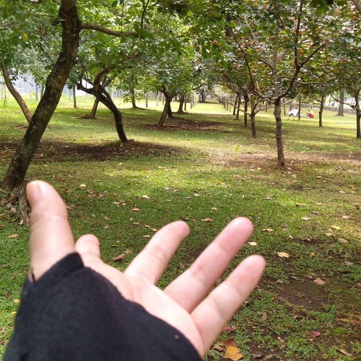 Taman Oasis ini menjadi tempat nongkrong yang asyik, luas, adem, udara bersih, terjaga kebersihan tempatnya dan yang paling penting gratis