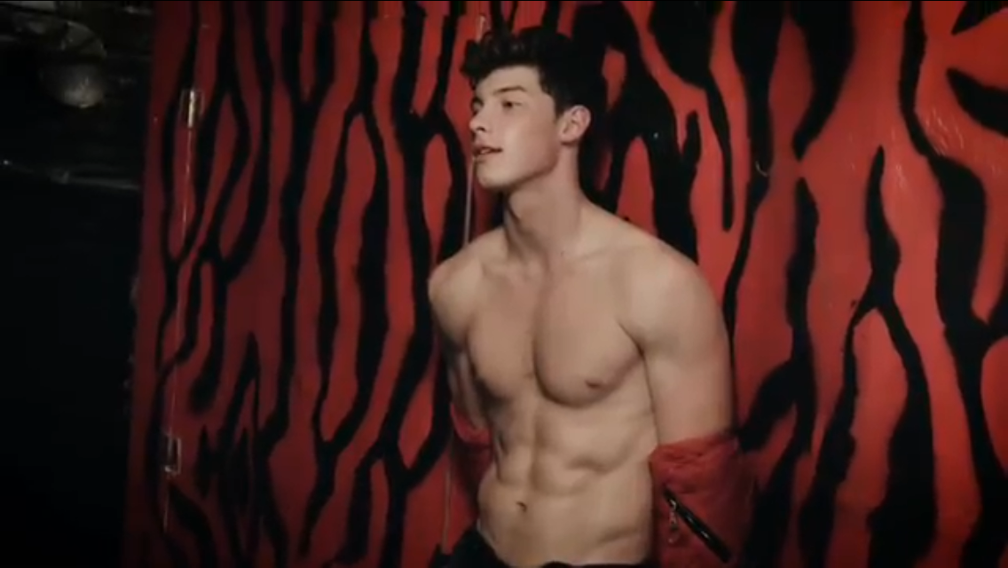 shawnmendes flaunt 🤘🏻