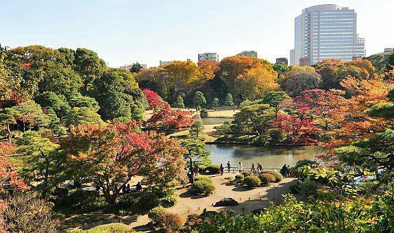 """Taman ini adalah taman yang paling indah di kota Tokyo, di himpit oleh berbagai gedung pencakar langit yang justru membuat taman ini terlihat sangat """"stands out"""" diantara cakaran para gedung tinggi di Tokyo"""