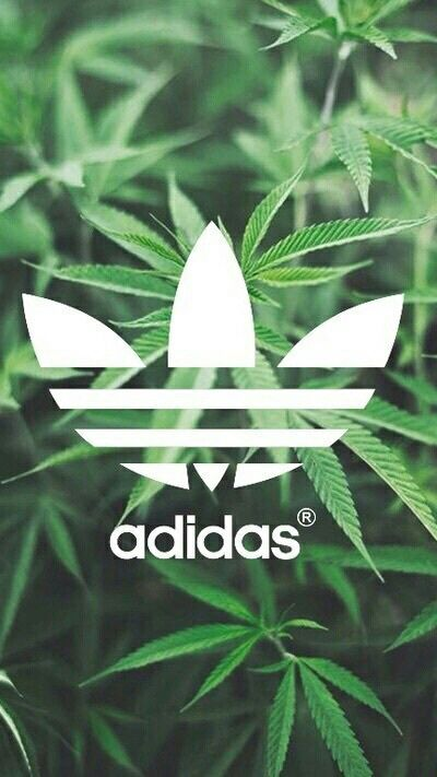 •How to & Consigli per le ragazze• - Adidas wallpapers