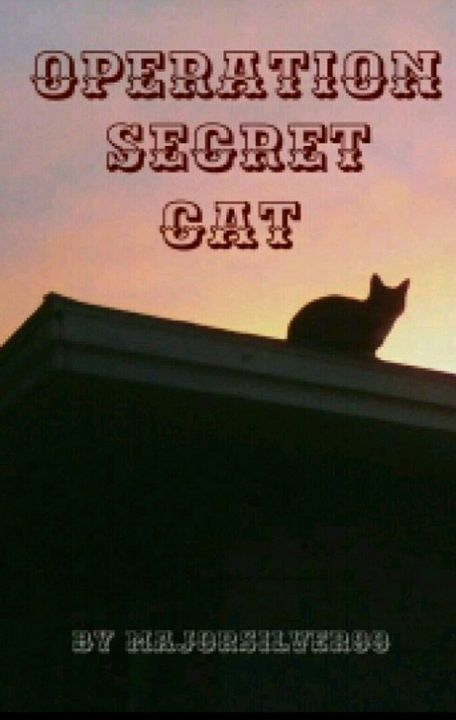 Operation Secret Cat by majorsilver99