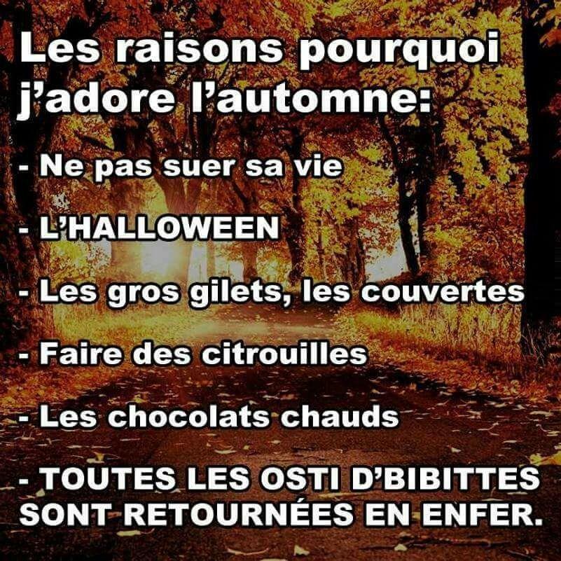 Personnellement, j'aime bien le printemps et l'été et l'automne pour la plupart des raisons suivantes :
