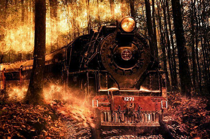 El arrullo del tren era tan acogedor que me permitía soñar, algo totalmente inusual en mí