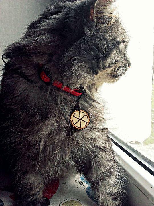 U Słowian koty poprzez swój wygląd oraz tryb życia były reprezentantami świata podziemnego, zwierzętami silnie naznaczonymi magicznie