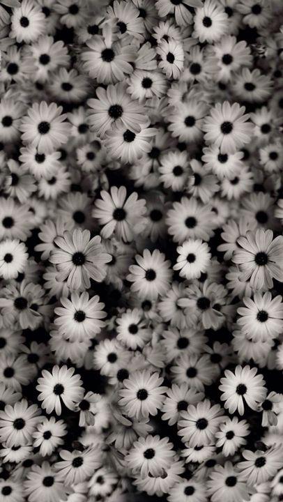 Fondos tumblr blanco y negro wattpad for Fondo de pantalla blanco y negro