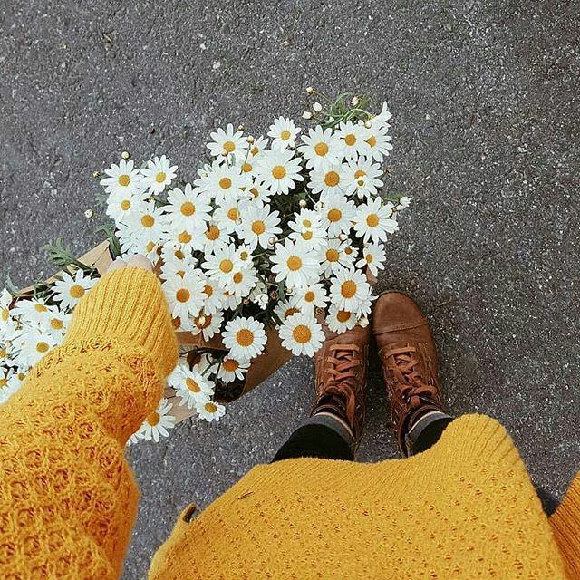 خلفيات ورد اصفر احببت روحا اهدتني وردا اصفر مجتمع همسات