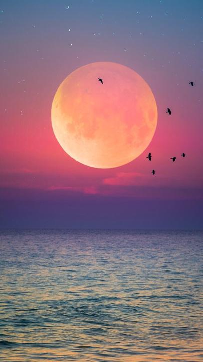 Tumblr Duvar Kağıtları Manzara 6 Ay Deniz Gökyüzü Wattpad