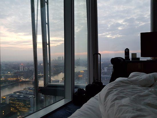 Shravan stirred in his sleep and Sumo slowly opened her eyes to a gorgeous view of the city
