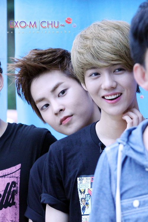 Fat Xiuhan Fan Fiction You Should Go On A Diet Wattpad