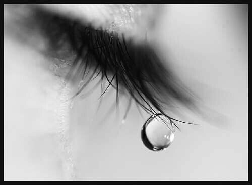 Quiet eyes hide their immense pain, It's a wonder how they are still sane