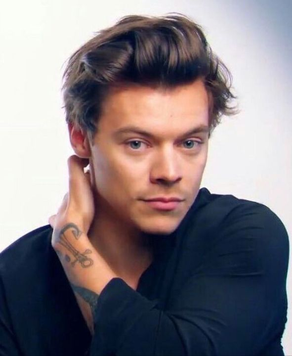 Harry Styles, as himself of course😍
