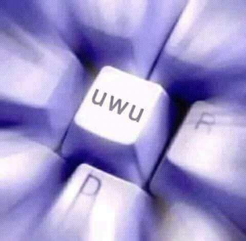 Pero no sé, uwu es 💓💘💖💕💓💘💖Ser uwu es ¿ser lindo?