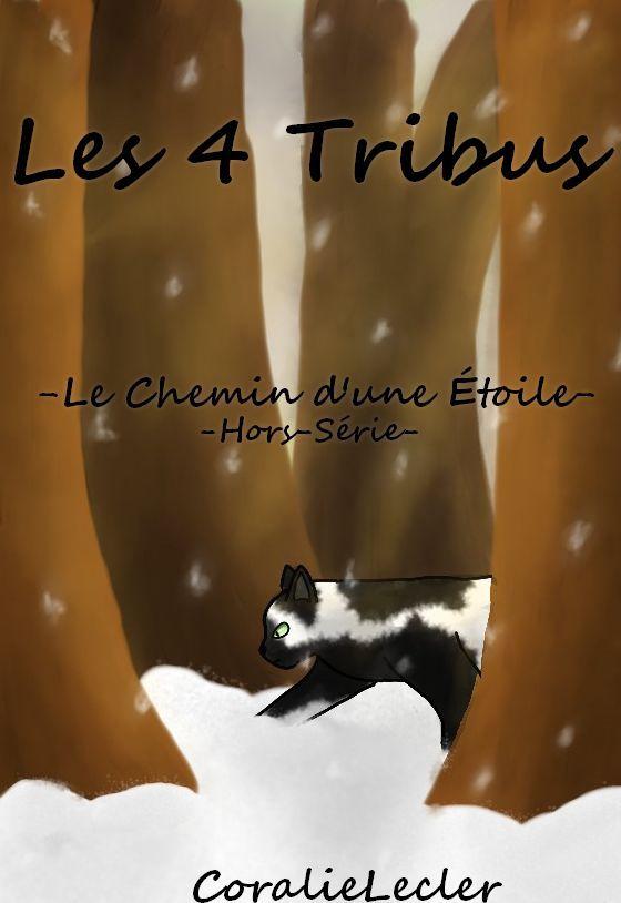 Et la couverture du Hors-Série n*3 : Le Chemin d'une Etoile! :3
