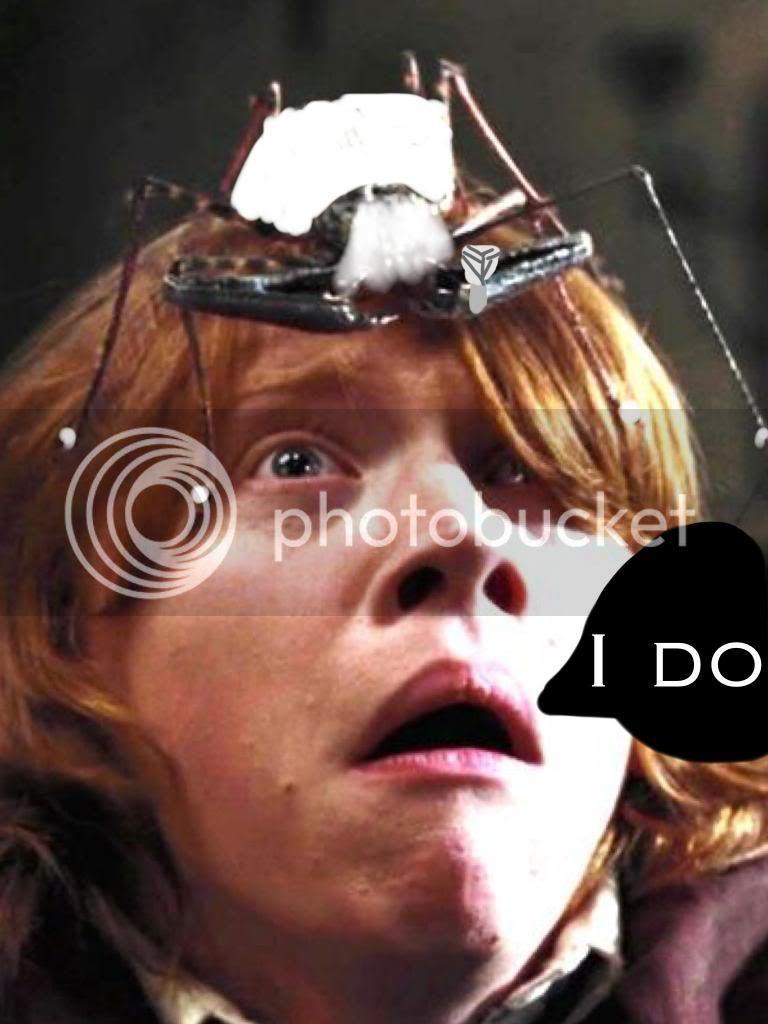 HogFace WartBook (A Harry Potter Fanfiction) - Chapter 2 ...  HogFace WartBoo...