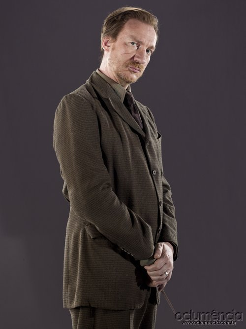 Lehrer Harry Potter