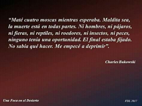 Coleccionista De Frases Parte Ii Charles Bukowski Wattpad