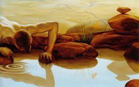 Hingga satu hari dia jatuh dan tenggelam ke telaga bersama bayangan indah yang ia kagumi selama ini