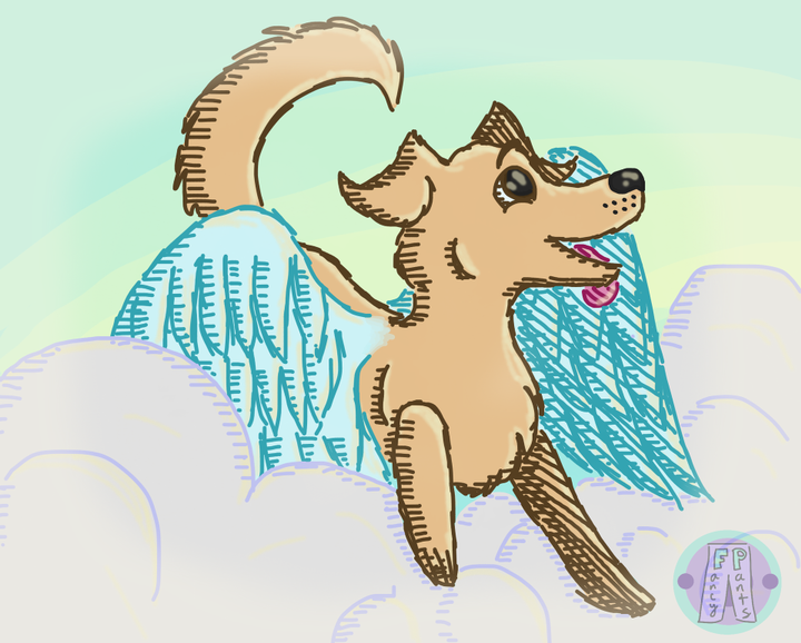 """Everyone say hi to Cloudy Sky, a brand new oc! I know the """"x with wings"""" trope has been done a lot of times, but I wanted to try it out on a friendly golden retriever"""