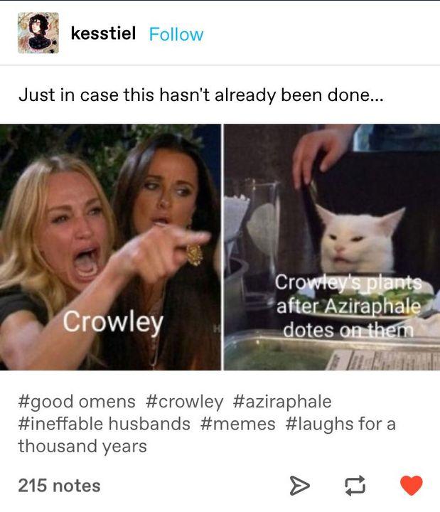Good Omens Memes Seventy Six Wattpad