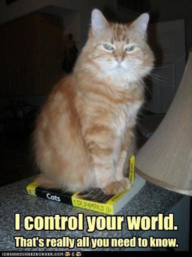 Heureusement que nous avons pris le contrôle de vos esprits à grand renfort de chatons mignons et autres manipulations sinon vous nous auriez massacrés !