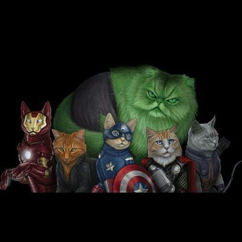 AND THE AVENGERS
