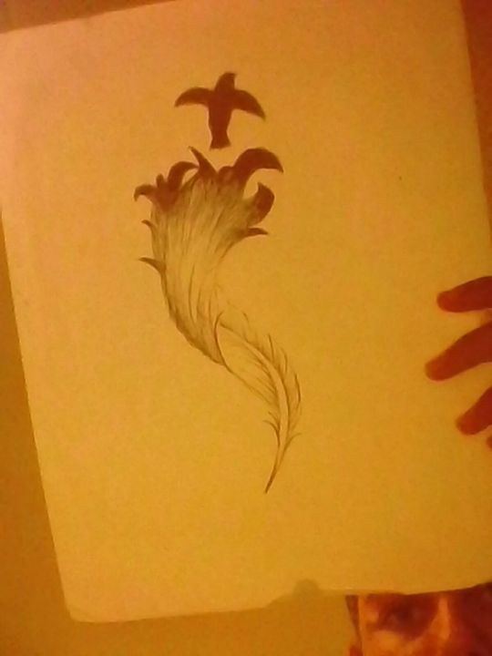 And a feather that I wanted to draw for the heck of it