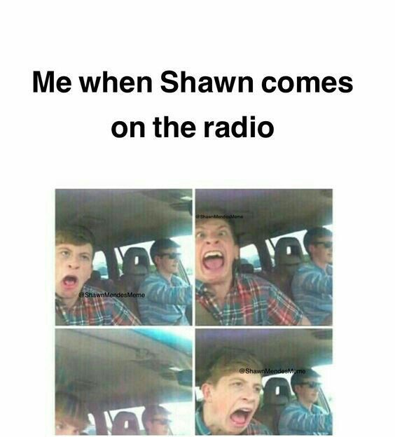 As you can see here in this image, ladies and gentlemen, is a Shawn Mendes fan at it's highest level of fangirling