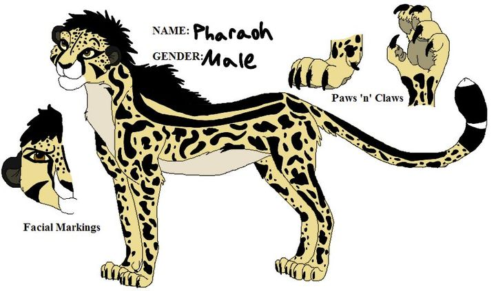 The Lion King Rp New Oc With Scenarios Wattpad